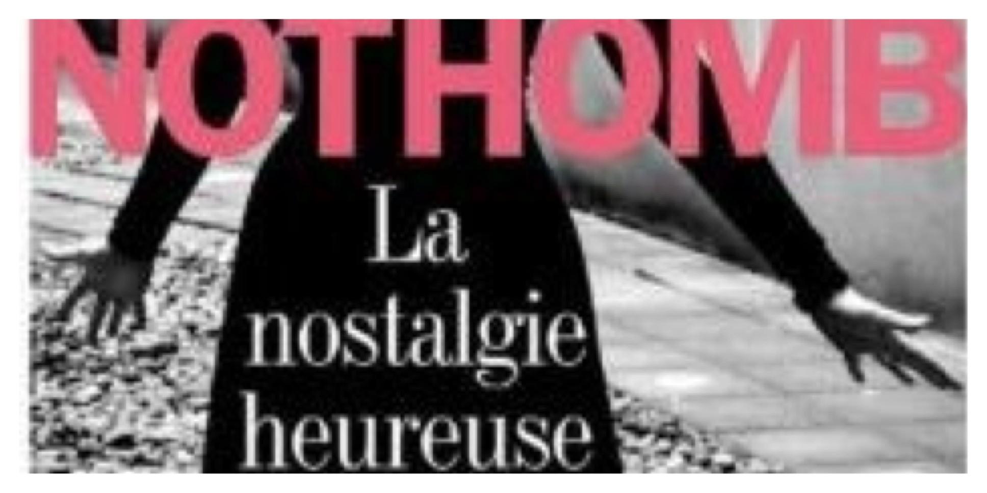 Amelie Nothom - Ma nostalgie heureuse - Dans la peau d'une blogueuse